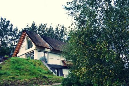 Dachy z trzciny – nie tylko powrót do tradycji…