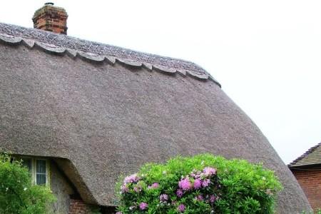 Dachy z trzciny: rodzaje wykończenia kalenic