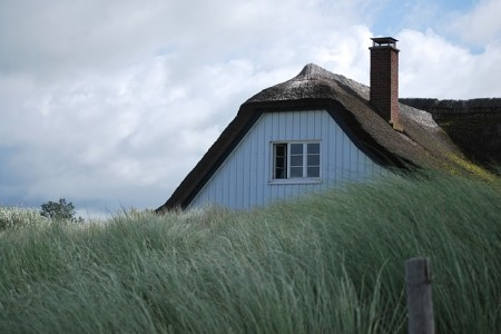 Dachy z trzciny – najnowszy trend, czy powrót do tradycji?